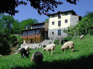 Turismo rural y sostenibilidad