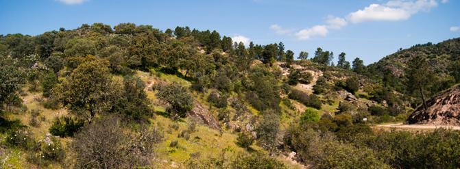 #SierraMorenaTrip: Naturaleza y etnografía en torno a un paisaje con mucha identidad en Andalucía 1/2