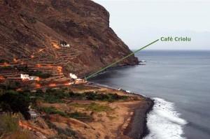 Cafe Criolu Tenerife