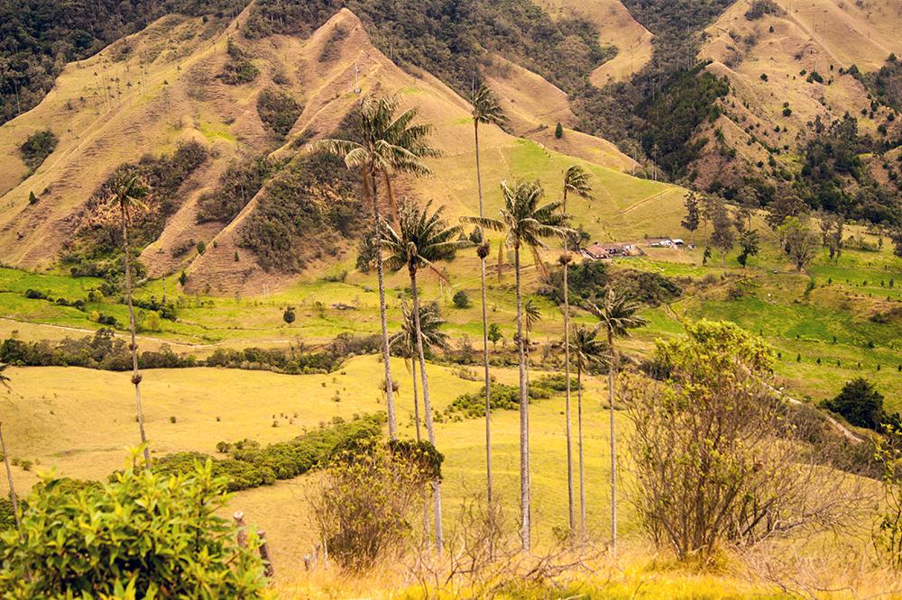 Turismo y paz en el eje de la actual coyuntura social y económica de Colombia