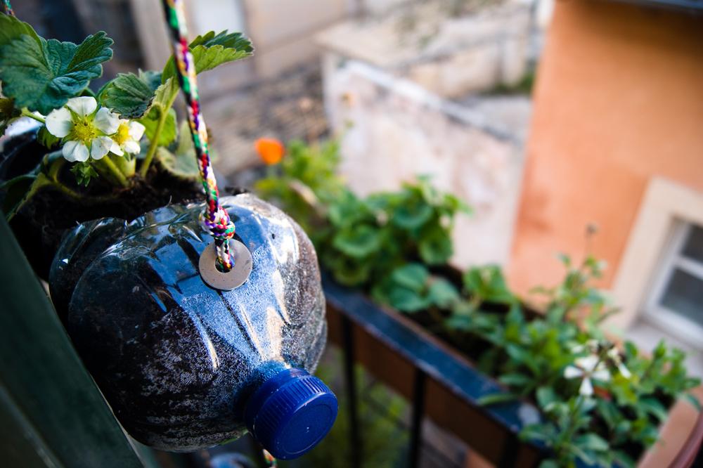 Cómo hacer un HUERTO vertical en casa con botellas de plástico RECICLADAS