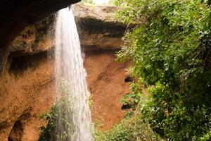 De vuelta a la Reserva Natural Comunitaria de DINDEFELO