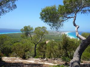 Vista desde Es Mirador