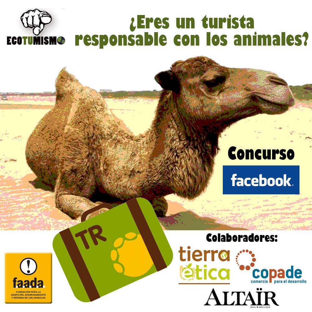 Concurso Facebook: ¿Eres un TURISTA RESPONSABLE con los ANIMALES?