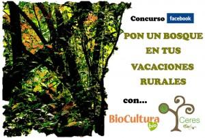 Pon un árbol en tus vacaciones rurales