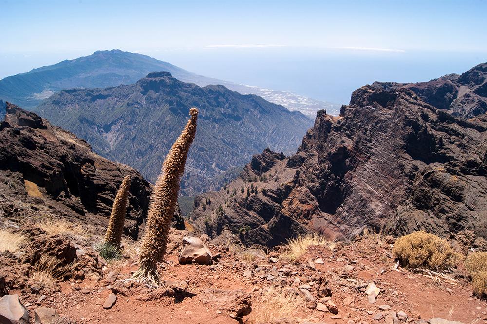 turismo sostenible en La Palma