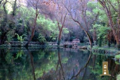 Concurso de Poesía: PRIMAVERA en el Monasterio de Piedra