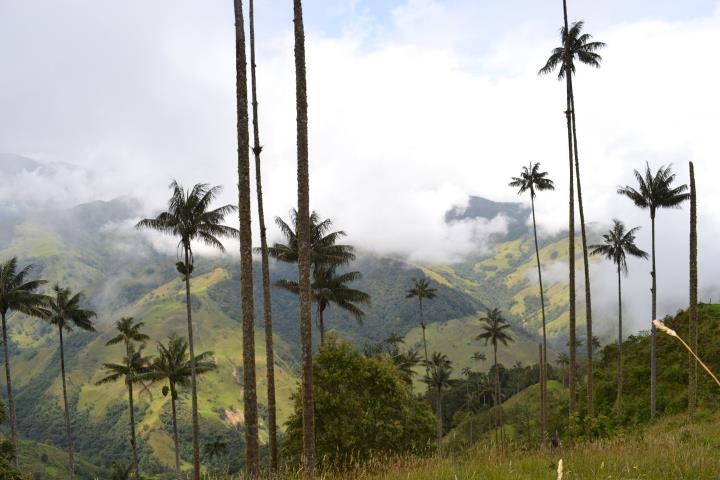 Pijao (Colombia): pueblo del buen vivir y primera ciudad SLOW de América Latina