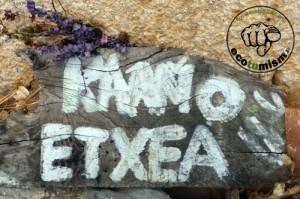 Proyecto Ceres Kaaño Etchea