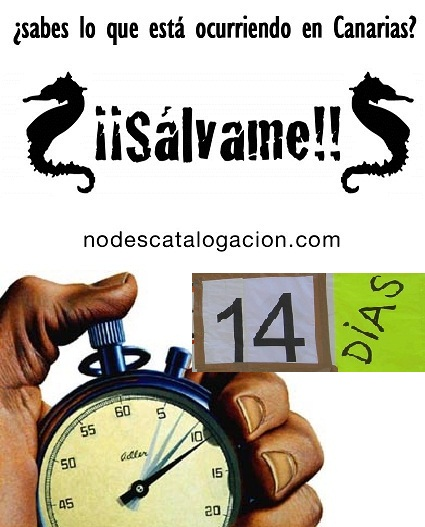 Quedan 14 días para CORTAR con el nuevo Catálogo de Especies Protegidas Canarias