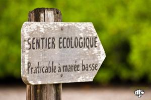 Senegal Keur Bamboung Ecoturismo