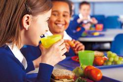 SLOW FOOD enseña a los niños españoles a comer SALUDABLE con los cinco sentidos