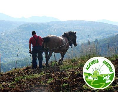 Vacaciones en la Granja – Accueil Paysan nace en España para valorizar actividades AGROPECUARIAS y turismo RURAL