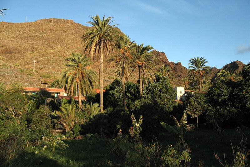 Hotel El Cabrito, ejemplo de respeto por la naturaleza