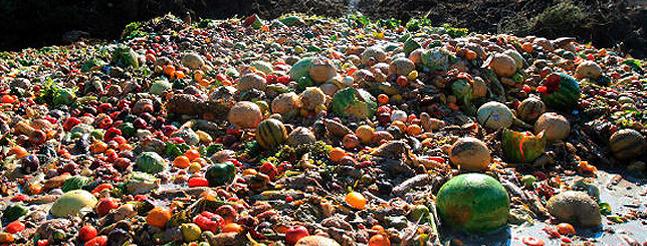 El desperdicio de alimentos en un mundo mal repartido