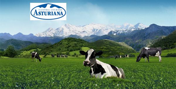 Frisona y central lechera asturiana