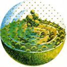 permacultura-holistica1