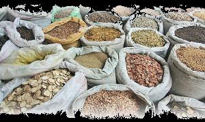 semillas-biodiversidad_agroalimentaria