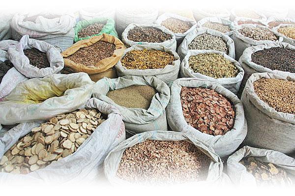 El patrimonio CULTURAL y SOCIAL ligado a la biodiversidad y soberanía alimentaria