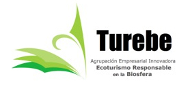 turebe