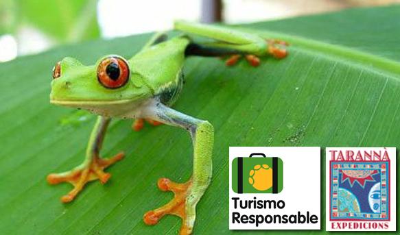 Viaje responsable con los animales a COSTA RICA con Tarannà y FAADA