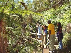 turismo_sostenible_conservacion